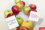 Sclerosi multipla, tornano in piazza le mele della ricerca