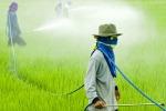 Ragusa, l'Arpa: «Forte l'impatto dei fitofarmaci»