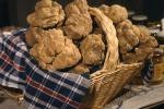 I prezzi del tartufo ai massimi storici, sfiorati i 6mila euro al chilo