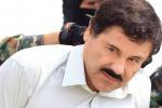 """Messico, ferito durante un tentativo d'arresto il """"signore della droga"""""""