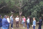 Arpa, incontri di educazione ambientale a Patti e Cefalù