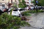 Maltempo, Anas al lavoro sulle autostrade siciliane per la rimozione di detriti