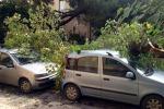 Caltanissetta, oltre 200 richieste d'aiuto dopo il nubifragio