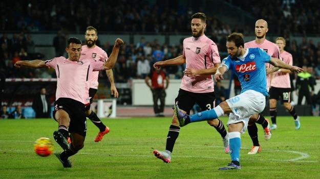 Calcio, campionato, Napoli, Palermo, Beppe Iachini, Gonzalo Higuain, Palermo, Calcio
