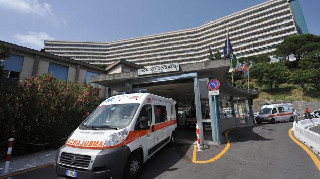 ebola, Organizzazione Mondiale Sanità, Sicilia, Cronaca