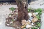 Da via Libertà a Romagnolo: cestini stracolmi di rifiuti e strade-discarica a Palermo