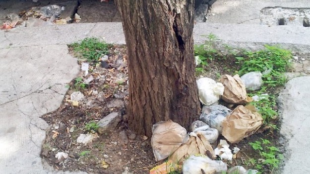 rifiuti, strade, Palermo, Cronaca