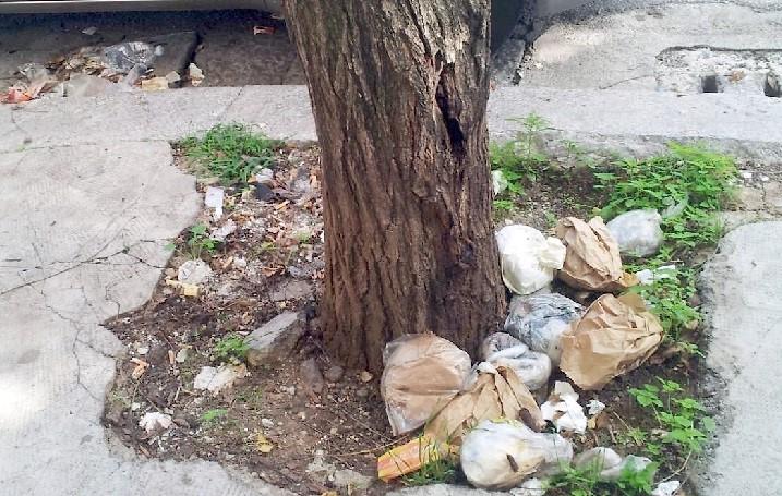 Da via libertà a romagnolo: cestini stracolmi di rifiuti e strade