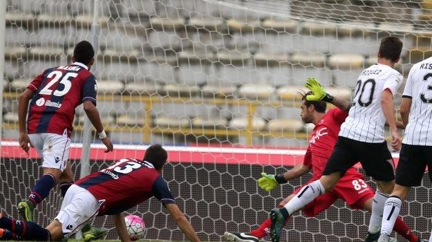 Bologna, Calcio, Palermo, rosanero, Palermo, Sport