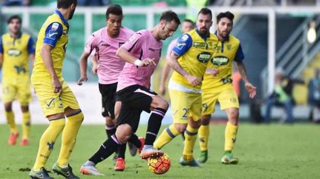 Calcio, palermo calcio, SERIE A, Palermo, Qui Palermo
