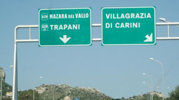 autostrada, mucche, palermo-mazara del vallo, Palermo, Cronaca