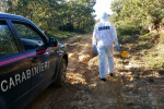 Incidente durante la caccia al cinghiale, muore a 41 anni