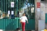 Palermo, sit-in di animalisti davanti al canile municipale
