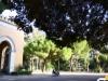 Forte vento a Palermo, chiuse ville e giardini fino a domani