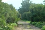 Castello di Maredolce, premio Benetton per il giardino