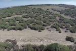 Colonia di un tempo, attuale sito archeologico: rovine e fascino di Kamarina