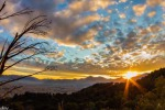 Dal tramonto all'alba: Palermo in oltre 16 mila immagini - Video