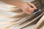Tintura fa perdere capelli a cliente, parrucchiere a giudizio a Canicattì