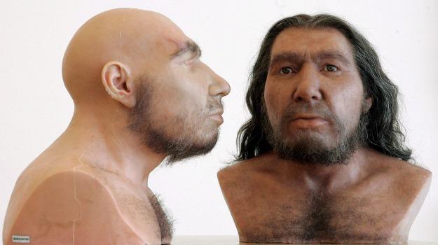 look, uomo neanderthal, Sicilia, Società