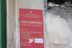 Palermo, canile vuoto per i lavori: ma resta la battaglia delle adozioni