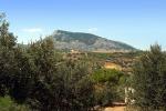 Incendi, Libera Alcamo: allarme per Monte Bonifato