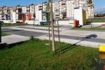 Catania, vandalizzata piazza Montana: Bianco furioso