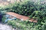Palermo, strade ad ostacoli tra erbacce e rifiuti: in via Giotto degrado nelle aiuole