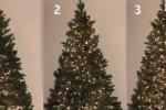 Come mettere le luci sull'albero di Natale? Le tre tecniche - Video
