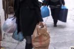 Caritas di Enna, niente più mezzi per ritirare alimenti