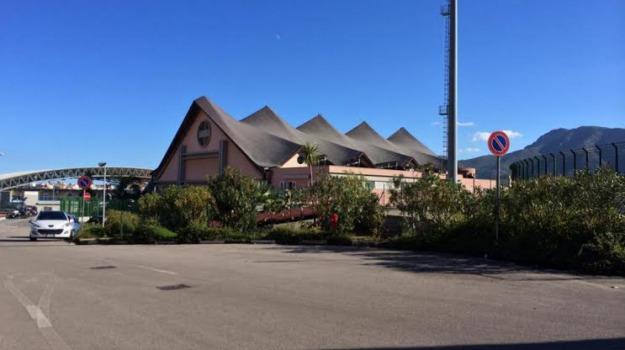 calcio a 5, cus palermo, Palermo, Sport