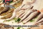 Da Ballarò al Capo l'ombra dei boss sul mercato del pesce: rapine e minacce
