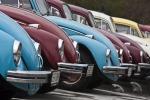 Buon compleanno Maggiolino: compie 70 anni l'auto più longeva della storia