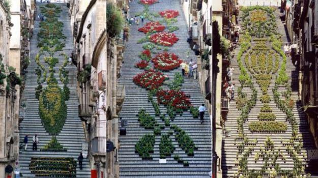 caltagirone, scalinata, Catania, Società