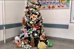 Al Civico l'albero dei peluche per i bimbi ricoverati - Video