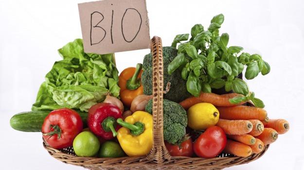 produzione biologica, Sambuca, Agrigento, Economia