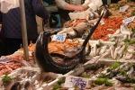 Sorpreso a rubare prodotti ittici, arrestato a Ortigia