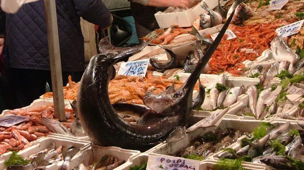 circomare, menfi, pesce, ristoranti, Sciacca, tutela dei consumatori, Agrigento, Cronaca