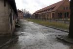 Giornata della memoria, a Cracovia anche l'Asp di Palermo - Video