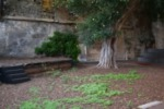Centro Amazzone senza sede, ospitalità del Civico