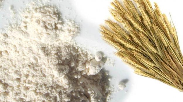 farina, malnutrizione, Sicilia, Società