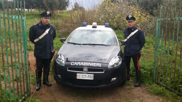 arresto, Palermo, Palermo, Cronaca