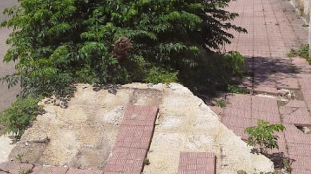 buche, istruzione, marciapiedi, rifiuti, TRAFFICO, Palermo, Voci dalla città
