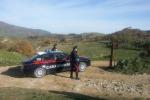 Agricoltore morto a Palazzo Adriano, è omicidio: ucciso con 2 colpi di pistola