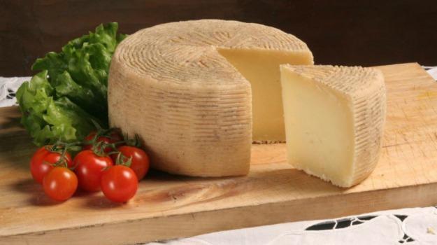 coldiretti, esportazione, formaggio, made in italy, mercati stranieri, pecorino, Sicilia, Economia