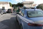 Canile di Palermo, rischi per stop servizio: protesta degli animalisti - Video