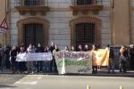 Le immagini di una protesta degli studenti disabili a Palermo