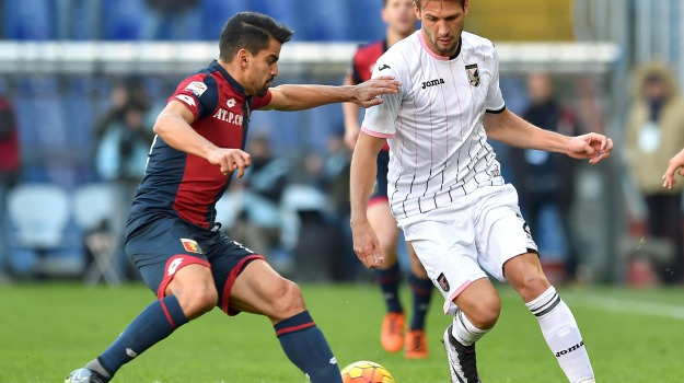 Calcio, genoa, Palermo, SERIE A, Palermo, Qui Palermo