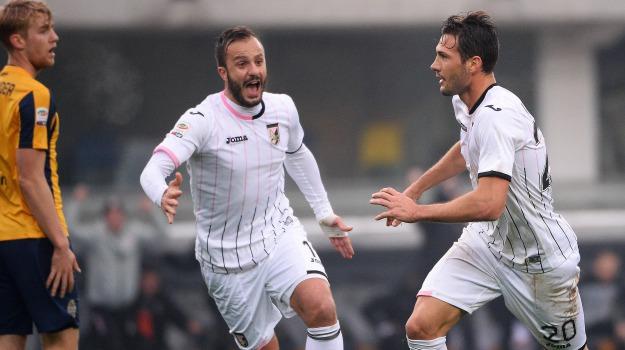 Calcio, Palermo, rosanero, verona, Davide Ballardini, Franco Vazquez, Stefano Sorrentino, Palermo, Calcio