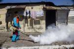 Zika, in Brasile anche l'esercito per combattere il virus