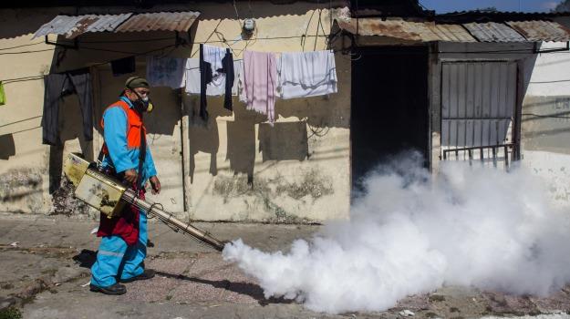 applicazione smartphone, Brasile, virus zika, Sicilia, Mondo